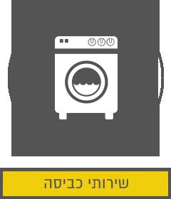 שירותי כביסה